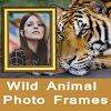 Wild Animal Photo Frames To Make Wild Photos APK