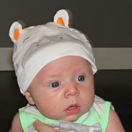 Cow Hat by Sandy Stevens Krassinger - Babies & Children Babies ( ears, baby, hat, cow, boy )