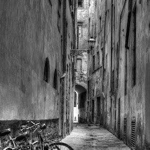 Florentine Side Street.jpg