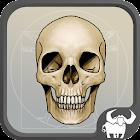 aBones - Skelett Knochen icon