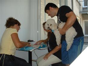 Photo: Todos (Adriana, Ale y Efra) revisando el mapa de Montreal... para ubicarnos un porquito.