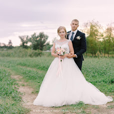 Wedding photographer Anna Dobrovolskaya (LightAndAir). Photo of 28.10.2017
