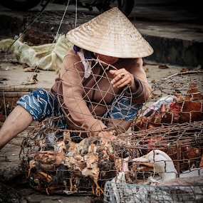 Ho Ain_20150329_11.21.37 by . Reedd2 - People Street & Candids ( ho ain, conical hat, ducks, chickens, vietnam, wire baskets, street trader )