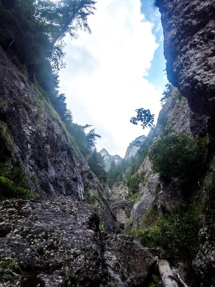 """Abrupt de """"avarie"""": Valea Seacă dintre Clăi, Valea Gălbinele (Munţii Bucegi)"""