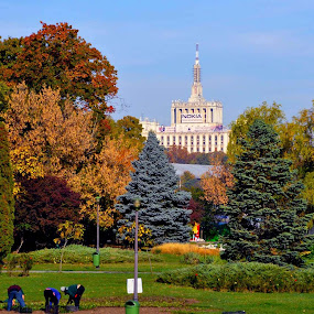 autumn works... by Mihai Nita - City,  Street & Park  City Parks ( people working, sky, casa scanteii, trees, autumn colors, city park,  )