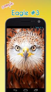 Eagle Tapeta - náhled