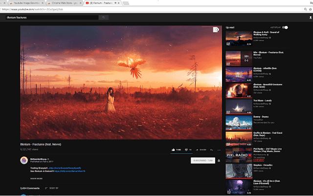 Youtube Image Downloader