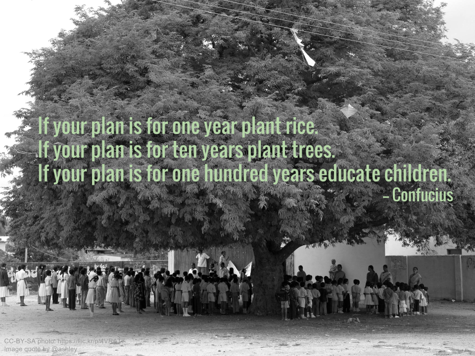 If your plan is for one year plant rice.  If your plan is for ten years plant trees.  If your plan is for one hundred years educate children. -- Confucius
