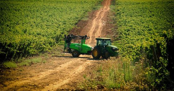 La agricultura española perdería 585 millones anuales de fondos UE