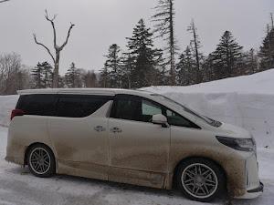アルファード GGH35W ELS  4WD  2019年のカスタム事例画像 マルト8さんの2020年02月28日23:03の投稿