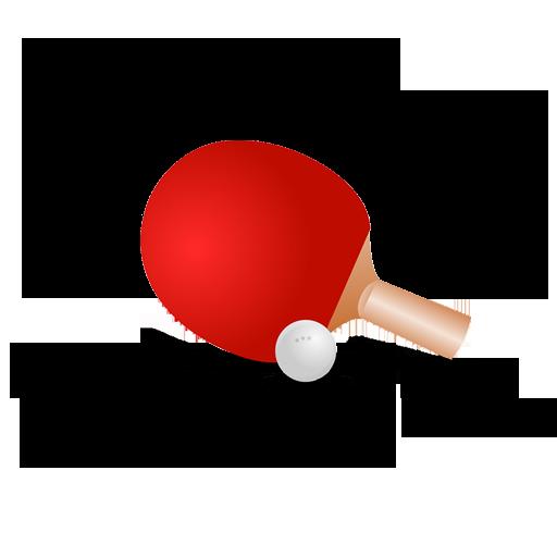 Ping Pong game Table Tennis