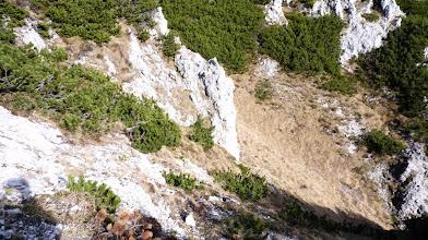 Photo: z grebena se spustimo in prečimo pod skalami nato nazaj gor