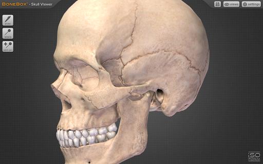 BoneBoxu2122 - Skull Viewer 1.0.0 screenshots 1
