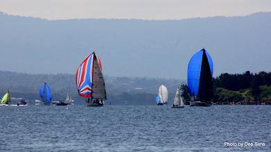 Photo: Year 2 Day 230 - Sailing Boats at Belmont #3