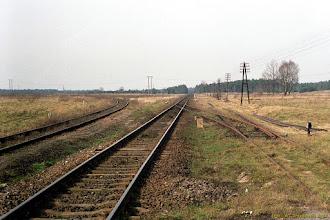 Photo: Od lewej: tor linii nr 246, tor linii nr 207 oraz początek łącznicy między liniami 207/27 {Toruń; 2002-03-12}