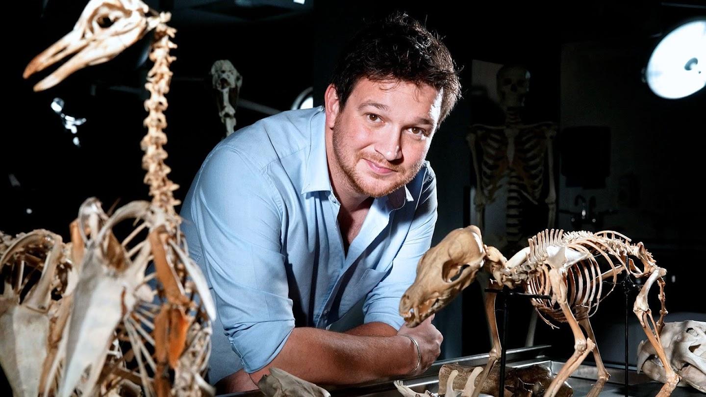 Watch Secrets of Bones live