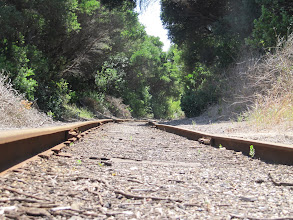 Photo: Year 2 Day 150 - The Railway Line to Queenscliff