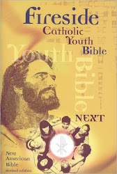 The Fireside Catholic Youth Bible Next!: New American Bible Revised Edition - Fireside Catholic Publishing