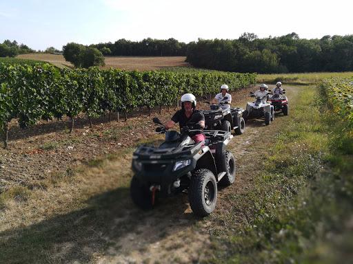 Dans les vignobles de Monbazillac