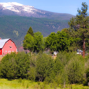 by David  Clayton - Buildings & Architecture Other Exteriors ( ranch, mountain, mountains, field, barn, montana, barns, trees )