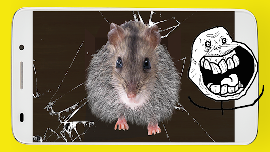 Mouse Prank : Funny jokes