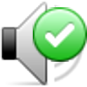 Locale Audio Update Notifier icon