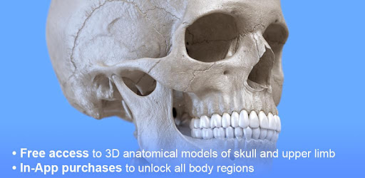 Skeleton | 3D Anatomy - Apps on Google Play