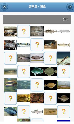 游戏鱼 - 测验