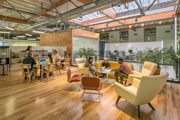 Several people meeting at tables in an open, modern office space with lots of wood and plants