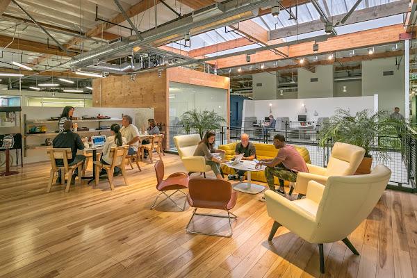 Groupes de personnes réunies autour de tables dans un espace de bureau moderne et ouvert, où le bois et les plantes vertes sont à l'honneur