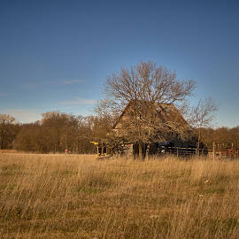 Left in the field  by Jeff Brown - Buildings & Architecture Decaying & Abandoned (  )