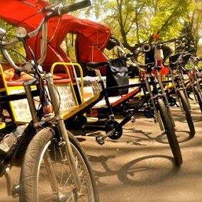 by Carmel Bation - Transportation Bicycles