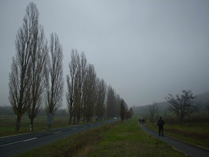 Photo: Kerékpárúton....