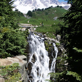 Myrtle Falls and Mt. Rainier by Dennis Rathbun - Landscapes Waterscapes ( mountain, waterfall, hiking, green and white, snow capped )
