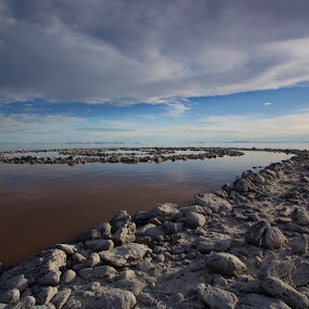 Spiral Jetty by Stephen Berry - Landscapes Beaches ( spiral jetty, robert smithson )
