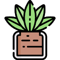 Houseplant Guide - Propagation & Care & Decoration icon