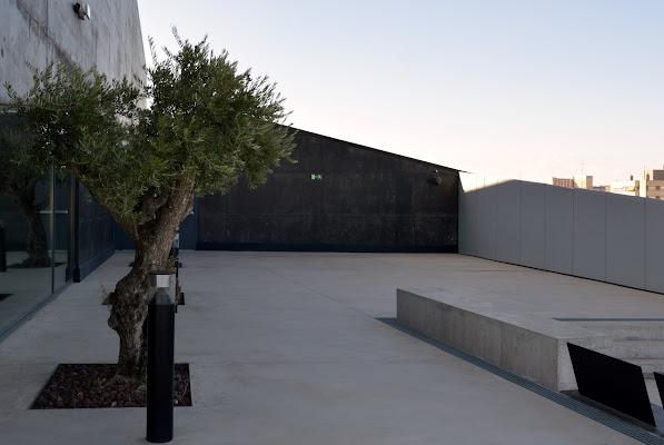 L'ulivo, il tetto, Zaragozza e la geometria... di edmond06