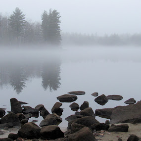 Fog Over Bunganut Lake by Lynne Miller - Landscapes Waterscapes ( water, lynne miller, maine, fog, bungnut lake, lyman maine )