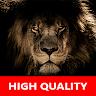 Real Lion Sounds - High Quality Lion Roar Sounds apk baixar