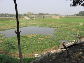 Photo: A panoramic view of Baradi Dham distant neighborhood