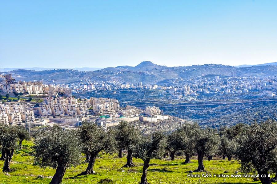 Пейзаж Иудеи с горой Иродион. Экскурсия по Израилю гида Светланы Фиалковой.