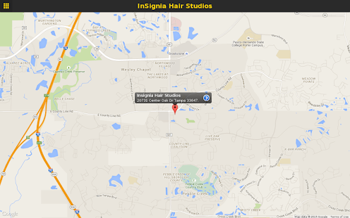 InSignia Hair Studios- screenshot thumbnail