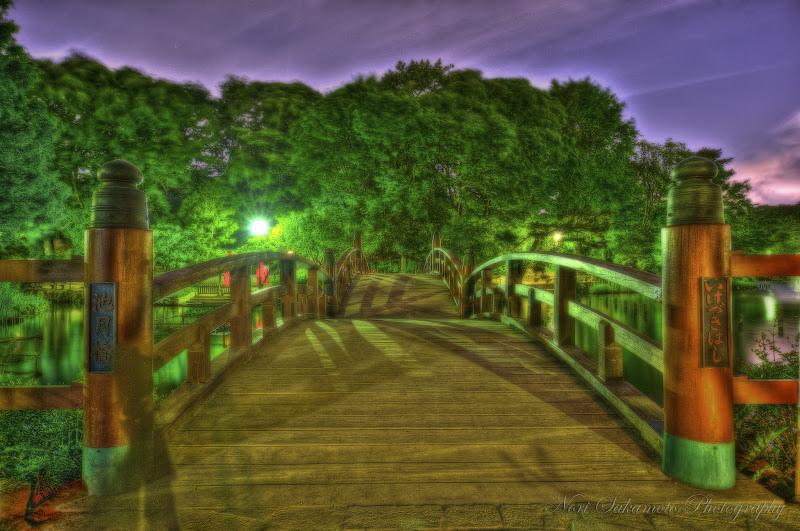 Photo: Ikezuki Bridge at Night