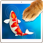 Kitten Catcher Fish Simulator
