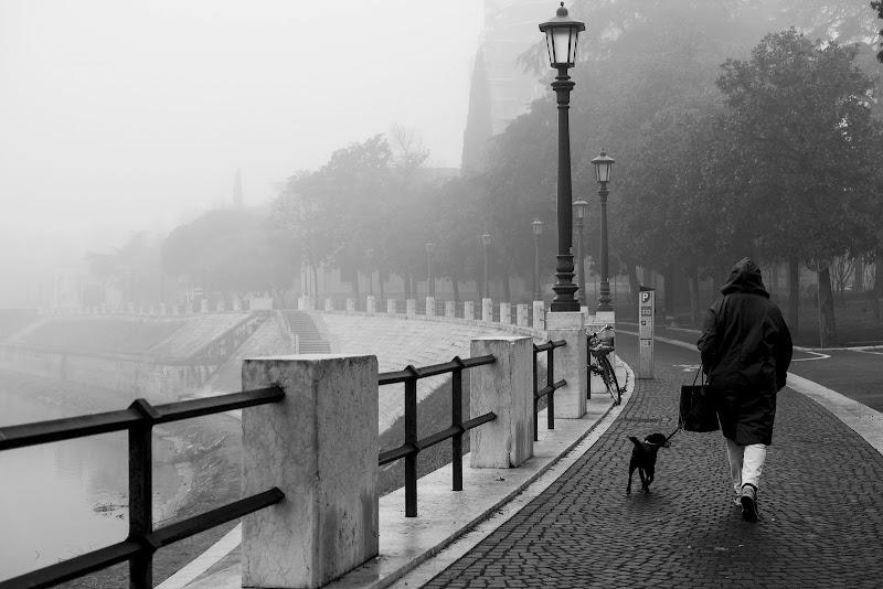 passeggiando nella nebbia di elisabetta_de_carli