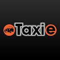 taxie passenger icon