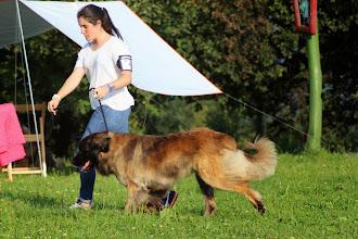 Photo: Nagybobanya Hilda Paly Maxima