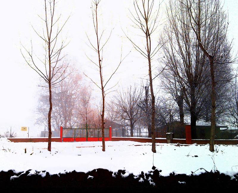 IL cancello rosso di Mario Ricci
