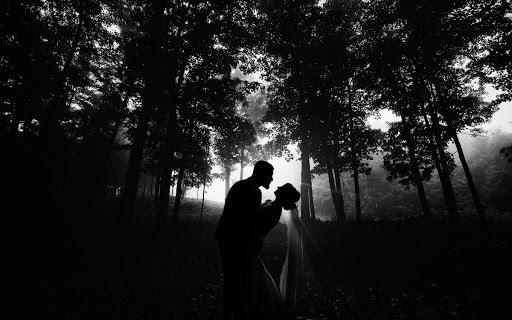 Wedding photographer Vladimir Lesnikov (lesnikov). Photo of 06.03.2019