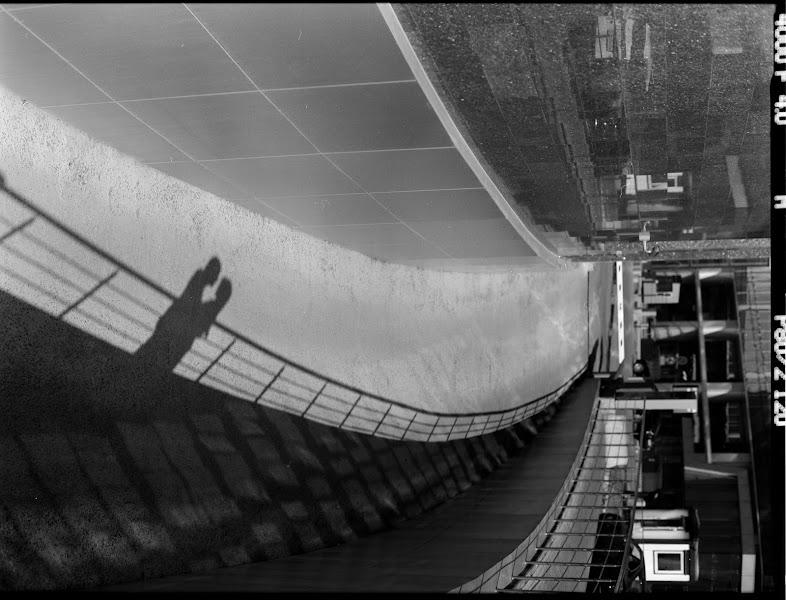 Свадебный фотограф Дмитрий Зуев (dmitryzuev). Фотография от 12.08.2014
